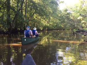 Canoeing the Pokomoke-1